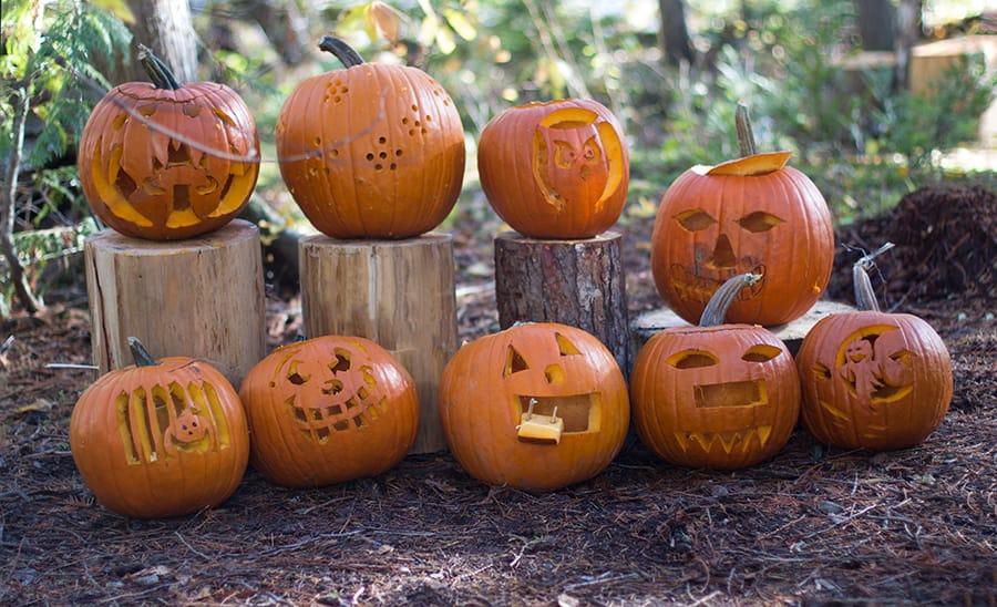 Celebrate_Halloween_Outdoors_pumpkin_carving.jpg
