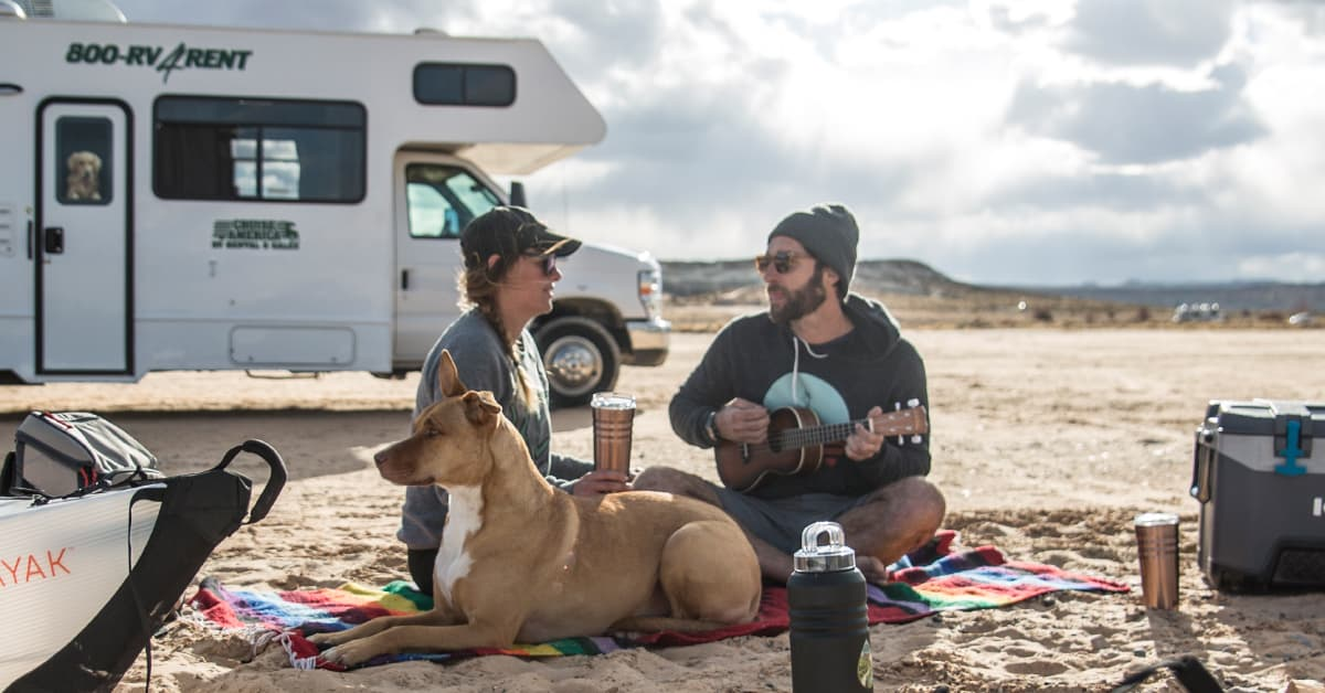 Must-Haves For Camping With Your Dog