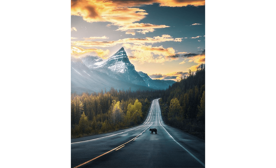 rv-rental_canadian-road-trips-2020_Icefields-Pathways.png