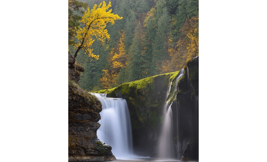 rv-rental-fall-color-road-trip-Columbia-river-gorge-(1).png