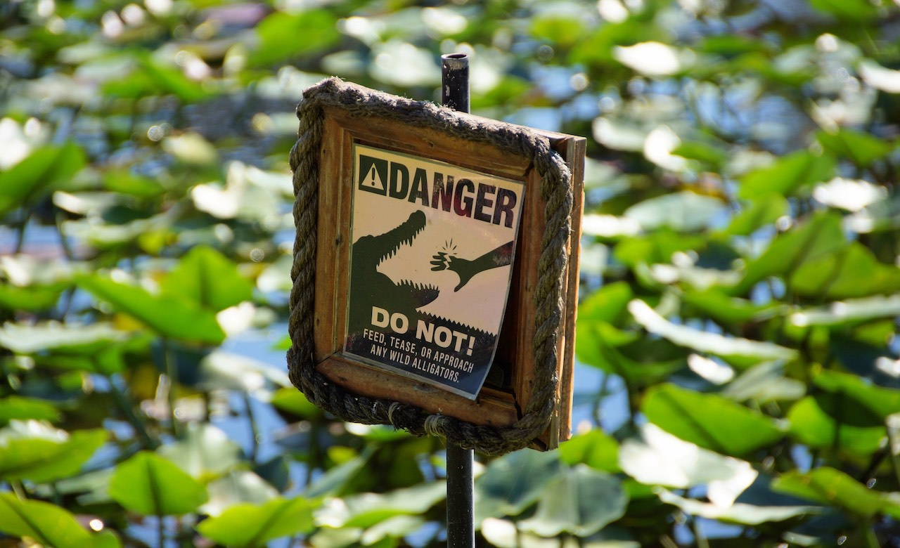 Cruise-America-Best-Time-to-Visit-Everglades-National-Park.jpg